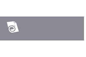 eCopy logo grey